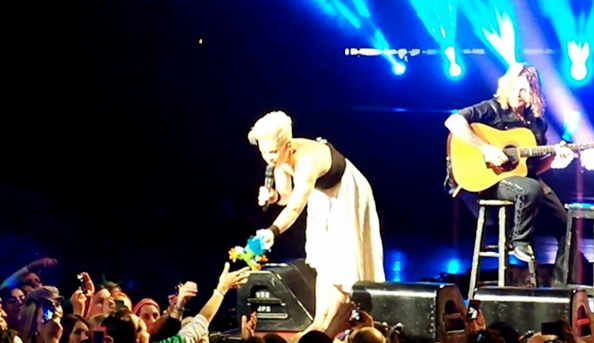 pink gives frog to child at concert