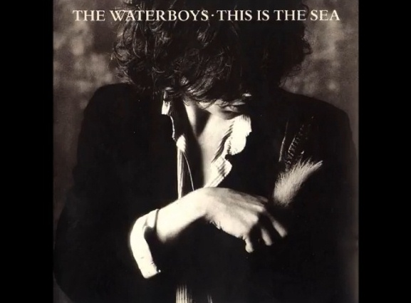 The Wateboys This is the Sea