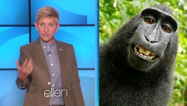 ellen degeneres on selfies and monkeys
