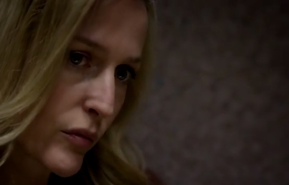 gillian anderson the fall series 1