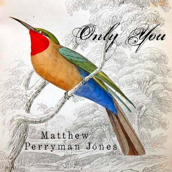 Matthew-Perryman-Jones-Only-You-Single