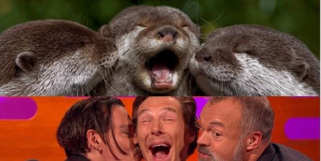 benedict cumberbatch graham norton johnny depp otters