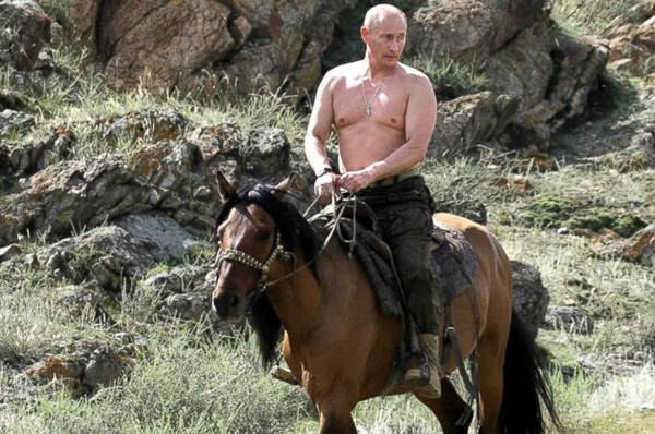 Putin as a gay clown on a horse
