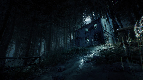 This Blair Witch walkthrough completes game in under 4 hours with all 4 endings